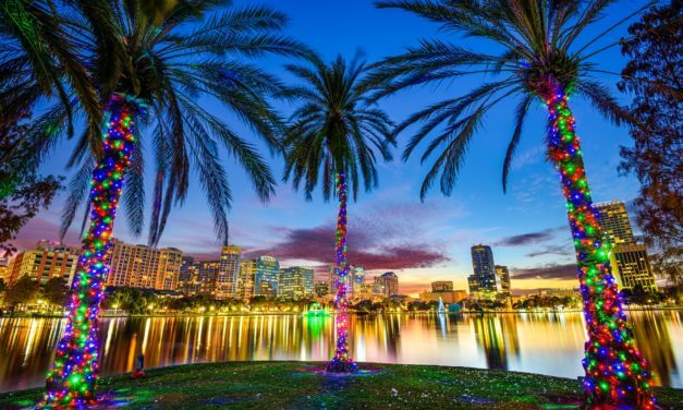 Past Event: 2017 Spring Musculoskeletal Leadership Summit
